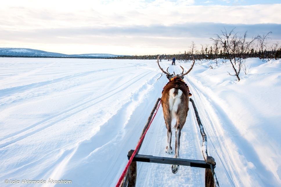 Swedish Lapland - Photography by Lola Akinmade Akerstrom