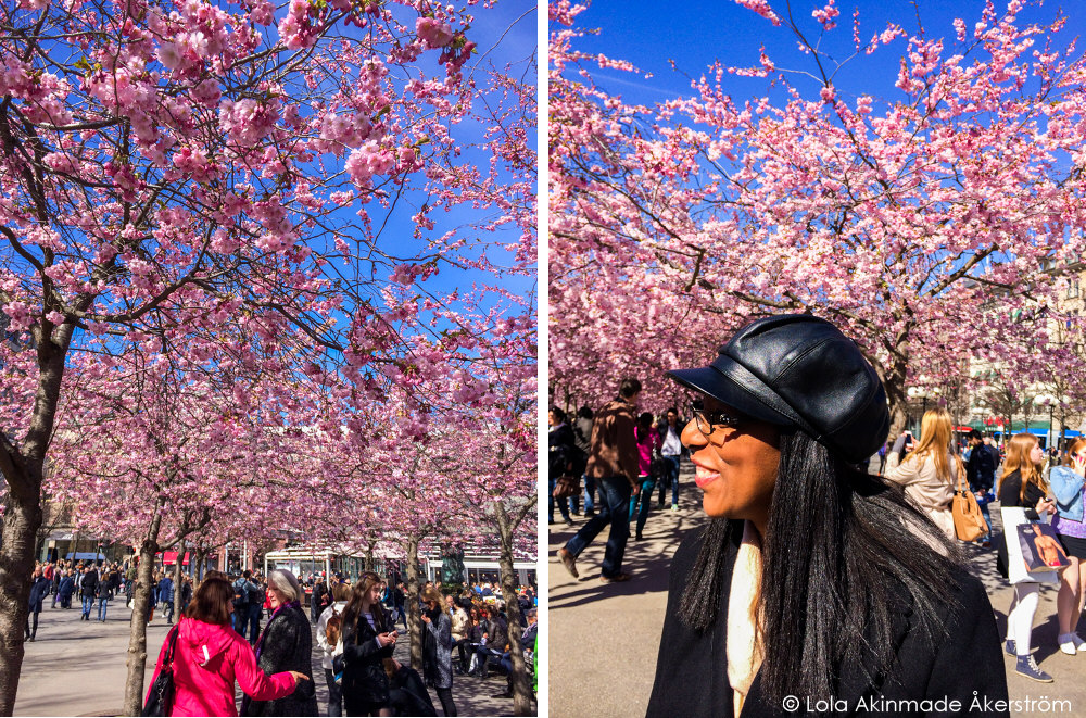 Lola_Akerstrom_CherryBlossoms_003