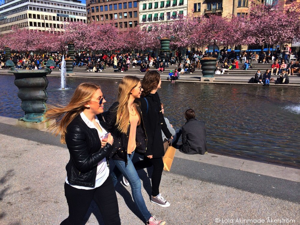 Cherry Blossoms in Stockholm - Photography by Lola Akinmade Åkerström
