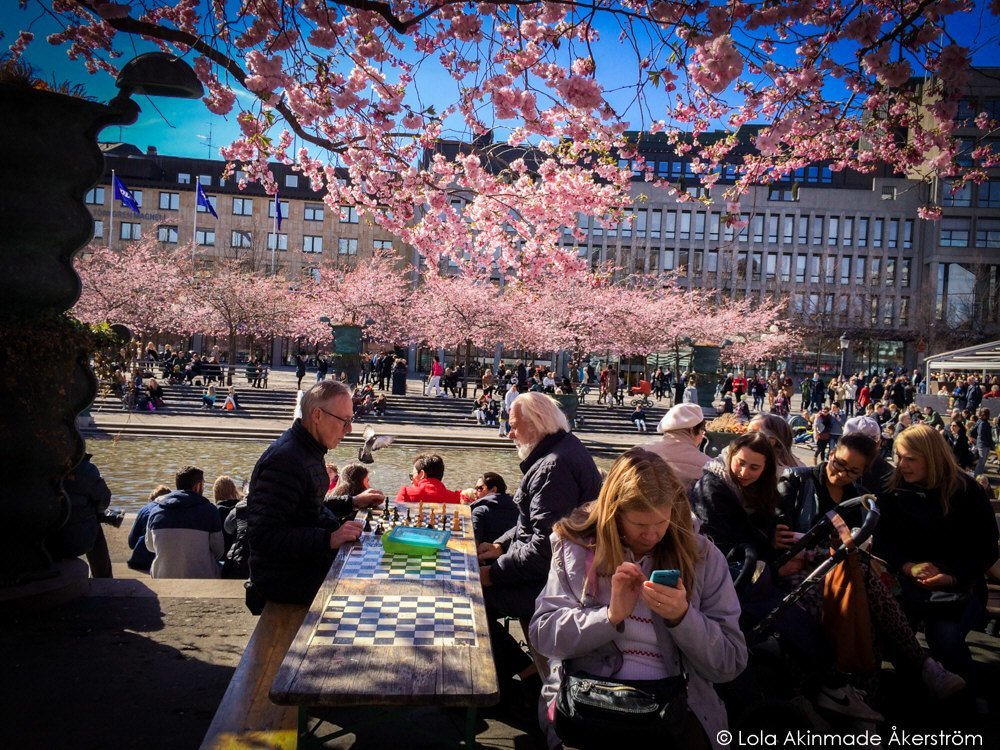 Lola_Akerstrom_CherryBlossoms_014