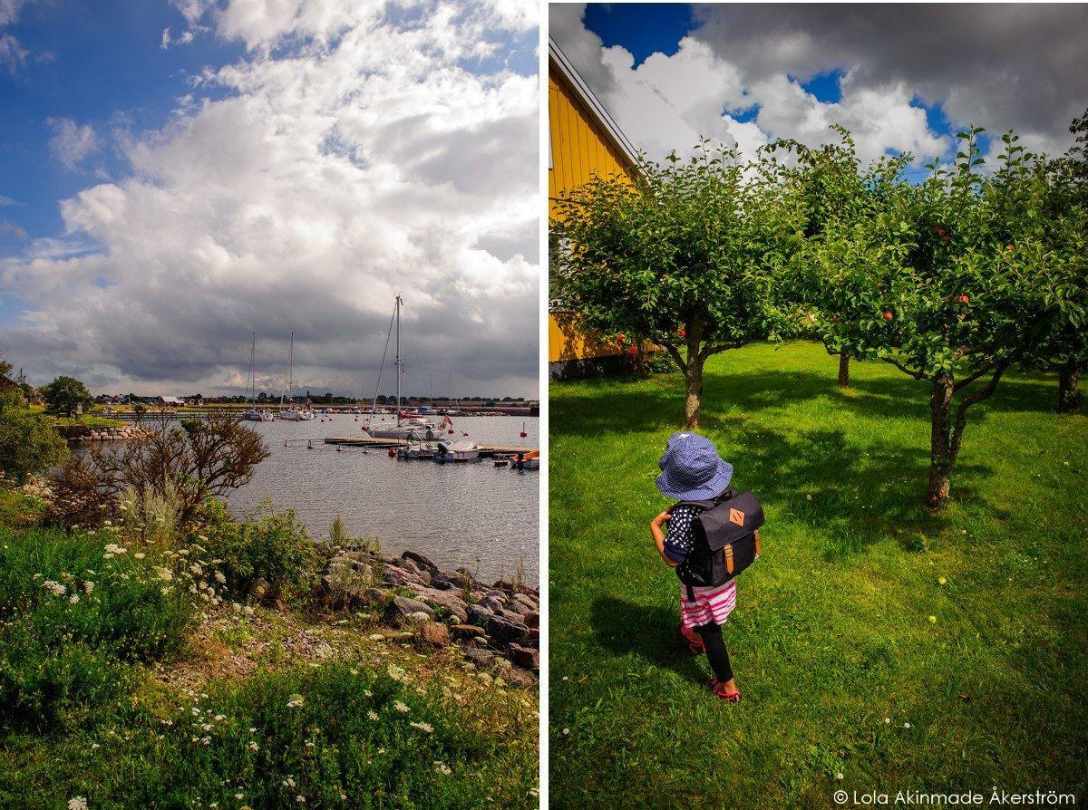 Akerstrom_Oland_Sweden (1)