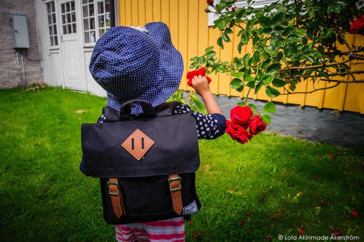 Photos from Öland, Sweden, by Lola Akinmade Åkerström