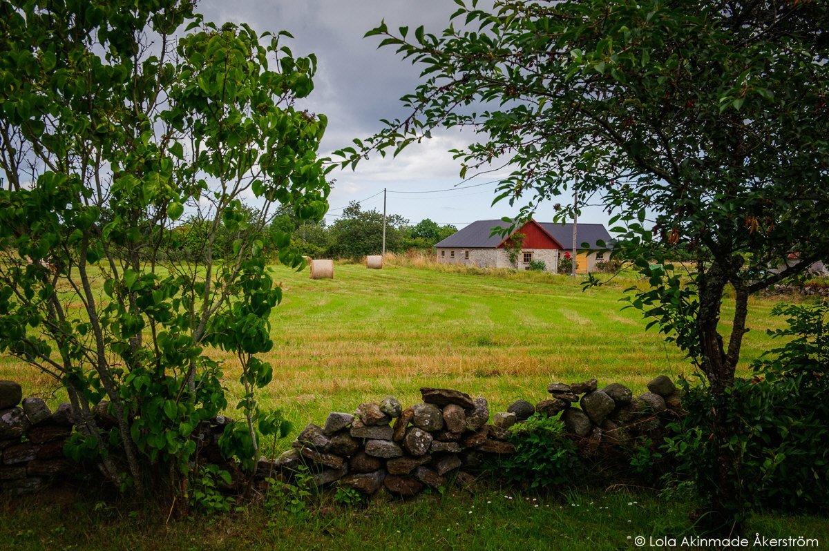 Akerstrom_Oland_Sweden (8)