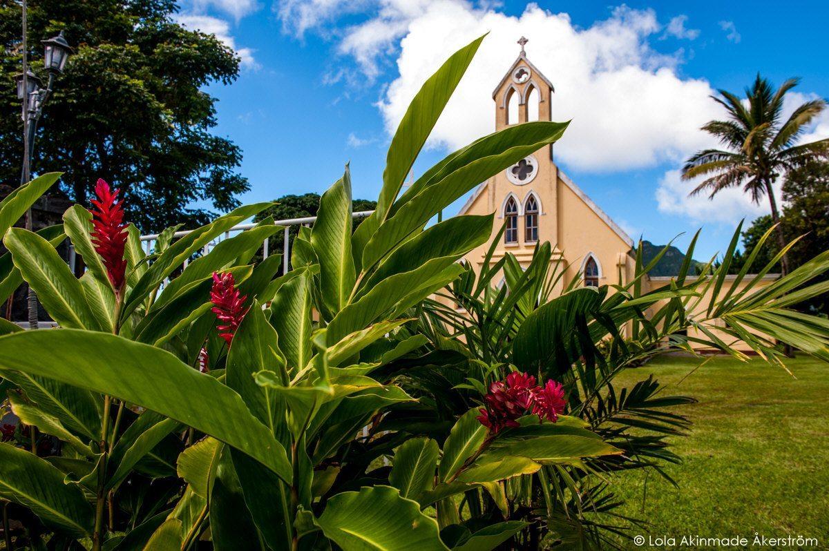 Mauritius_1246