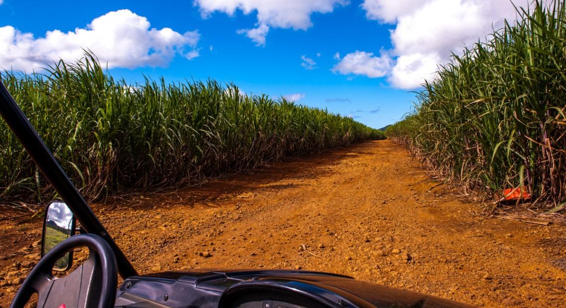 20 interior landscape photos of Mauritius