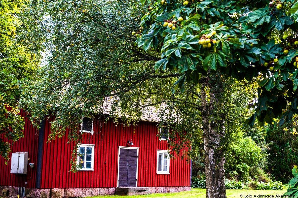 Classic red Swedish cottage