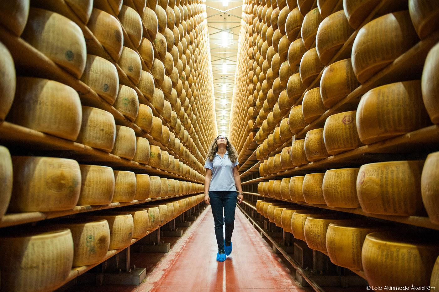 Wheels of Parmesan Cheese