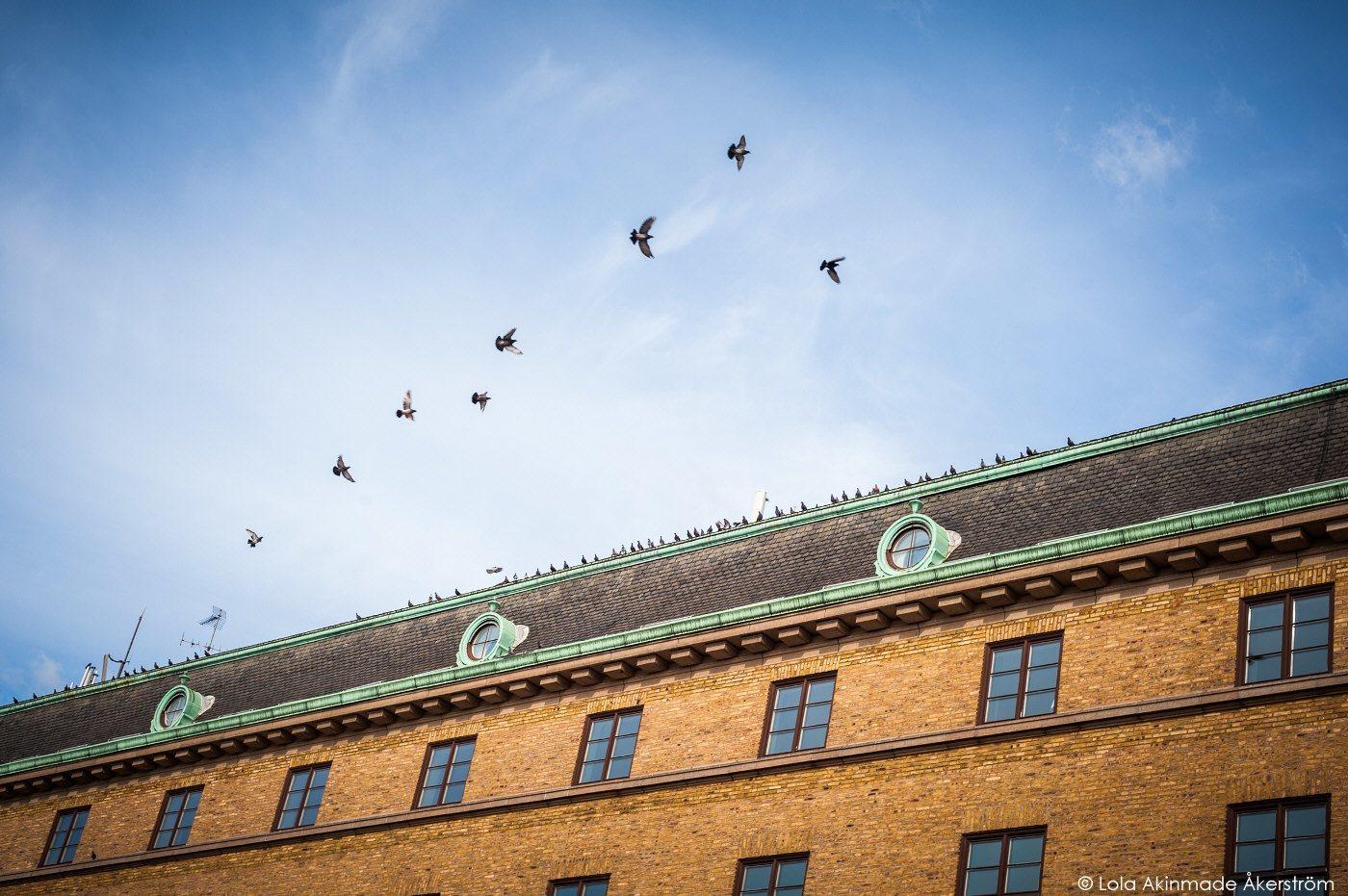 Clarion Post, Gothenburg