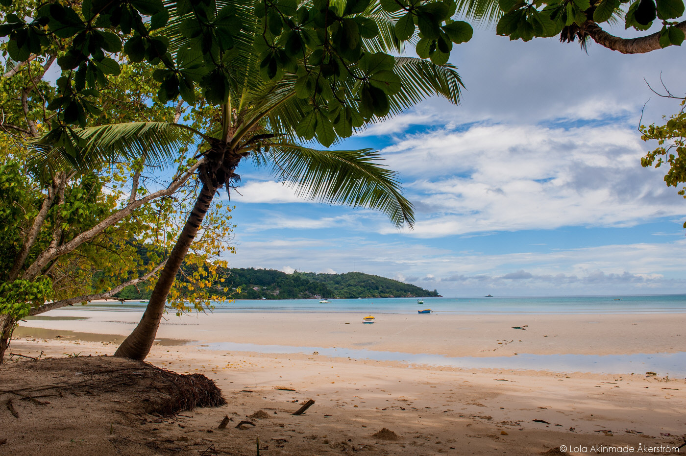 Akerstrom_Seychelles_124