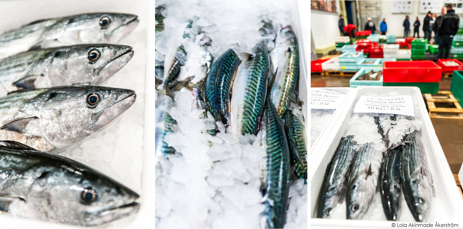Gothenburg Files: Inside the Fish Auction in Photos