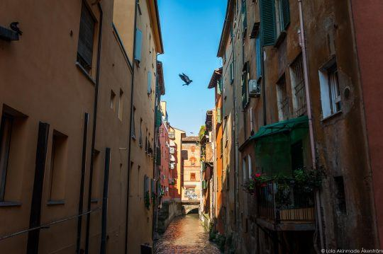 110 Everyday Photos of Bologna Italy