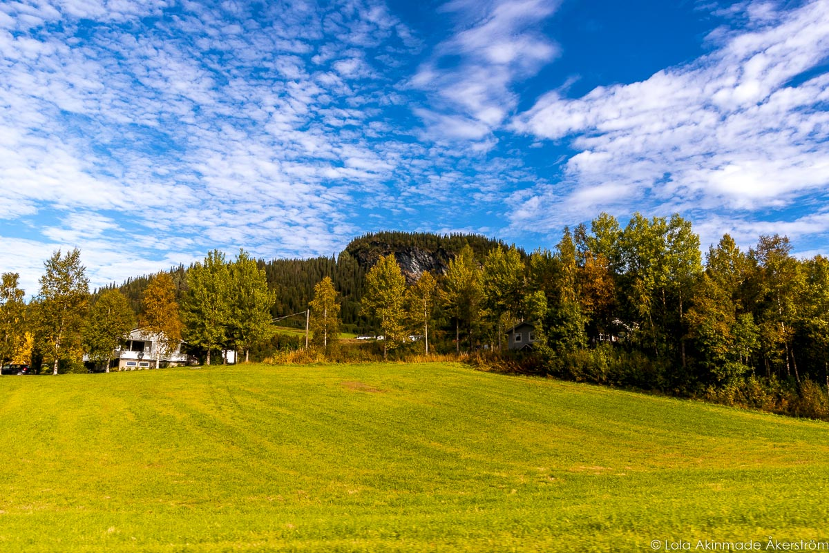 Scenes from Selbu