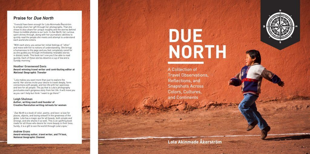 Due North - Lola Akinmade Akerstrom