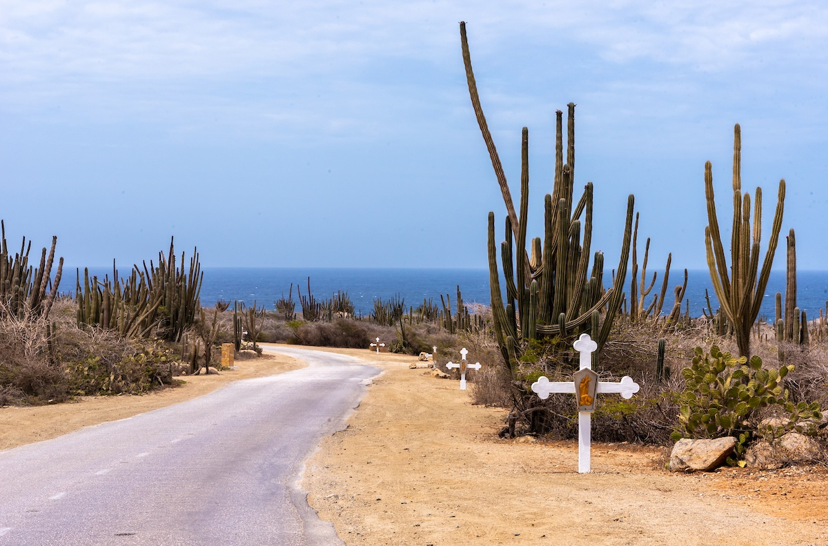 What to do in Aruba